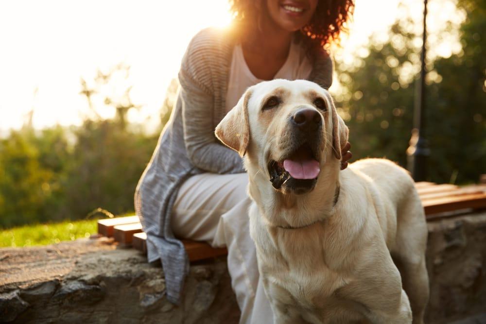 perro-blanco-chica